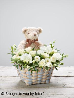 White Kisses Baby Basket