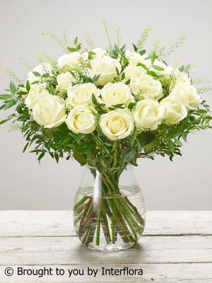 Sympathy Rose Vase Plus
