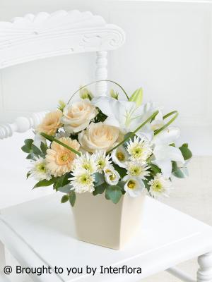 Buttercream Beauty Arrangement